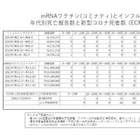 新型コロナウイルスやワクチンによる死亡数 竹林先生の分析