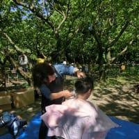 「阿蘇マロンの樹」での支援活動に参加して