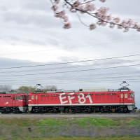 EF8195特集/配給列車(4)