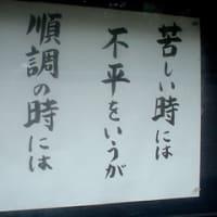Le café oursblanc 321 不平と感謝としまなみ海道
