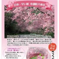 桜の季節に(^^♪