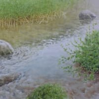 水彩お絵描き思い出めくり№221「春の小川2」