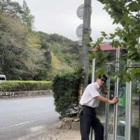秋の風景と、最近見なくなった「公衆電話」で電話をかける男