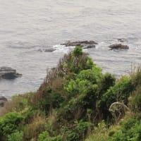 城ヶ島(2)