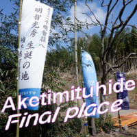 明智光秀最後の場所🐎「行ってきました」竹藪の地域で竹武器に刺された行けなかった坂本城