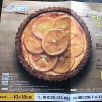ローズメイ×紅玉コラボ商品 オレンジスライスチーズケーキが通販に
