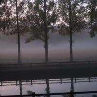 霧がかかる打上川治水緑地