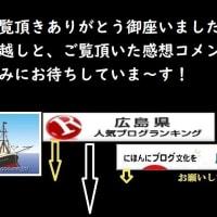 2020・01・15・ジム友さん夫婦と一緒に旅する🚢カリブ海エクスプローラークルーズ2019Byリーガルプリンセス⑧&⑨へようこそ!