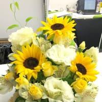 夏の花、ひまわりが皆様をお待ちしています
