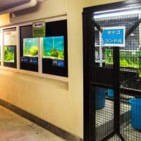 野毛山動物園 FILE:10 タナゴ・夜行獣舎、しろくまの家