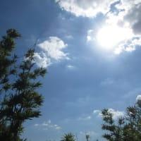 【気まぐれ写真館】 9月の「猛暑日」