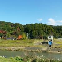 強風の松浦川釣行 in November 2019
