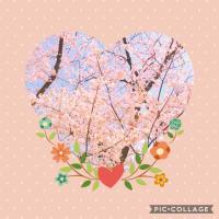 4月。赤坂での美バレエ・エクササイズ。スケジュールのお知らせです。*美バレエ・エクササイズ
