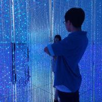 東京散歩 チームラボの世界感を体感