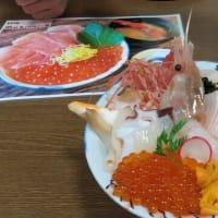 本日のランチは札幌場外市場の北のグルメ亭で海鮮丼を。