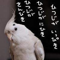 オトのハコブネの日(6月17日)