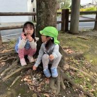 らいおん組☆公園
