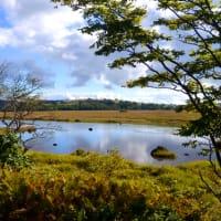 草紅葉彩る八島湿原を歩く。