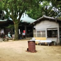 本日は究極の先祖供養大龍寺の秋季永代土砂加持法会へ。通常13名ほどいるお坊さんが台風の影響で3名で。当ブログ読者に声をかけられました。