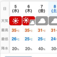 今日も暑そう!