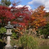 池と紅葉~その2