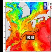 台風10号の勢力を弱めたのは黒潮だった! <21日正午、台風12号発生>