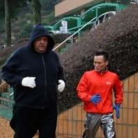 東京マラソン挑戦の曙さんが練習公開 「止められても走る」