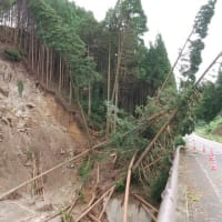 災害時の緊急検査について