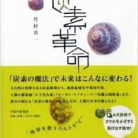 ■科学技術書・理工学書<ブックレビュー>■「新炭素革命」(竹村真一著/PHP研究所)