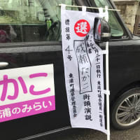 2019選挙運動アルバム