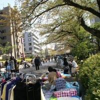 東京武道館避難所の様子(2011.4.17)