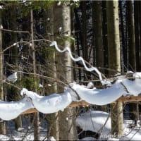 雪のアートとコゲラ。