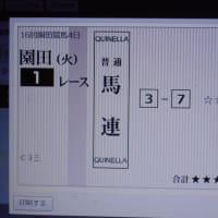 文化の日 園田競馬1R 買いました。😊💛