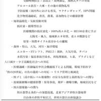 「詭弁・誤魔化し・先送り」は日本人の文化(某業界紙掲載予定原稿)