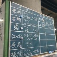 水産事業部から小田原早川漁港の水揚げ情報|株式会社JSフードシステム