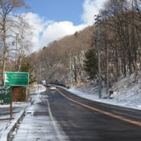 目覚めの淡雪国道。
