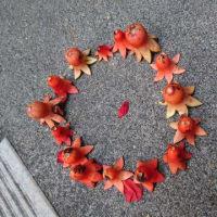 ザクロの花が・・・巻