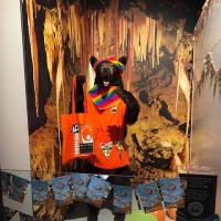 ついに見た!念願のリトルマーメイド、これがまさかの自然科学郷土博物館の展示品、ウケねらいか?天下のグロ物件