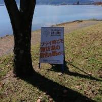 【レポ】諏訪湖オンラインマラソンレポート③【最終回】