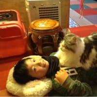第 3回 猫好きさんの会 ねこのポーズ