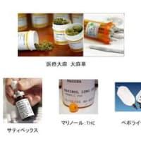 医療大麻-剤型