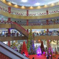 ベトナム資本のショッピングセンターが開店