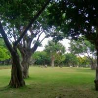 厦門(アモイ) 海湾公園