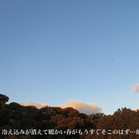 1/18 今日は風のち冷たい雨