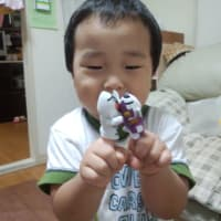 The finger puppet of Masked Rider