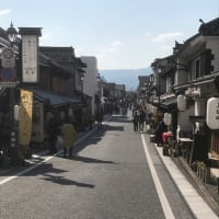 第40回日田天領まつりに行ってきました。
