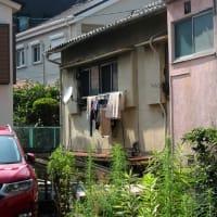 桜坂 No.2   (中央区)