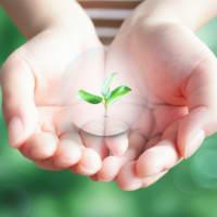 エコ活動☆ 納品書など環境保護のため簡略化します。~ブログNo453