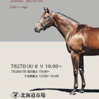 【セレクションセール2021(Seletion Sale、1歳)】~結果概要(売却総額・売却率・平均価格・中間価格レコード、最高額馬写真・動画など)