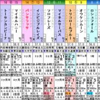 【パンサラッサ】前半の走りがカギ!? 10/18オクトーバーS・枠順&予想